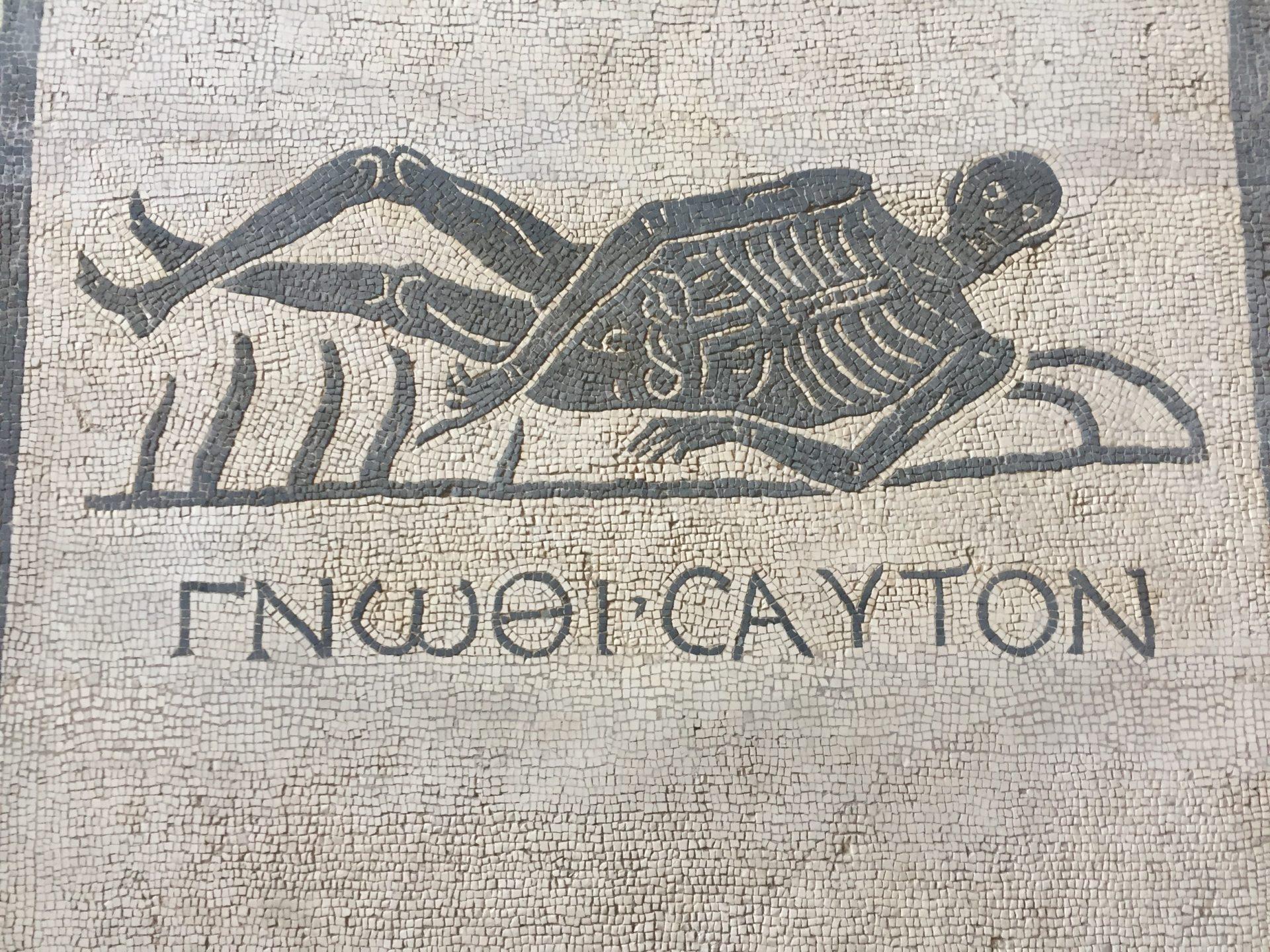 "<img src=""http://marenostrum.pl/wp-content/uploads//2019/11/Poznaj-samego-siebie-termy-Dioklecjana.jpeg"" alt=""poznaj samego siebie szkielet termy dioklecjana/>"